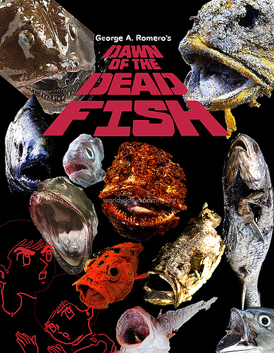 Dawn_of_the_dead_fish
